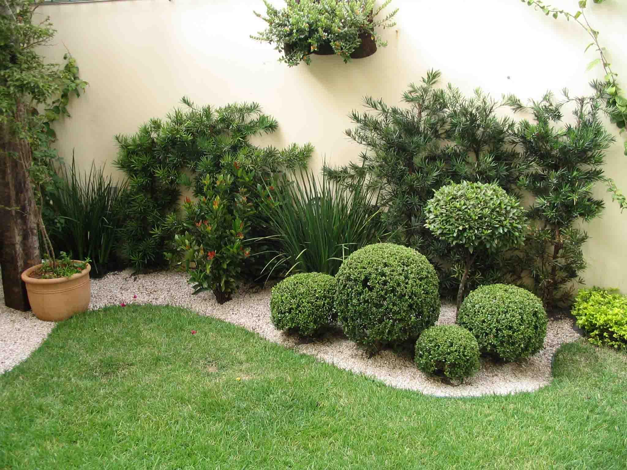 plantas jardim pequeno:Decoracao De Jardim Pequeno