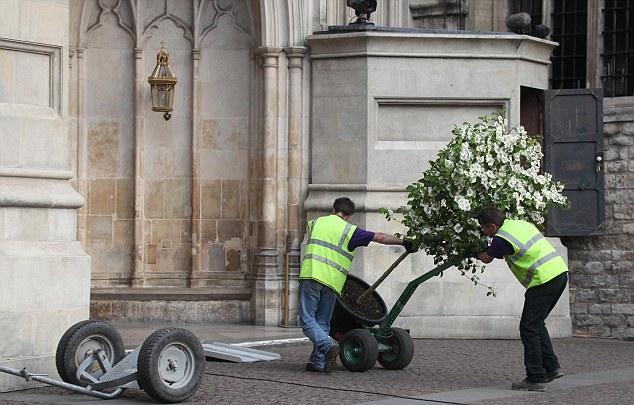 decoracao do casamento de kate middleton:Casamento Real Kate & William – Decoração Com Árvores Naturais No