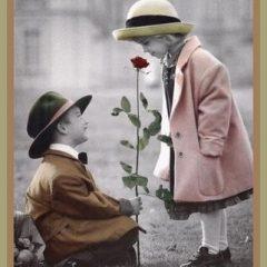 Como escolher a flor adequada para cada ocasião