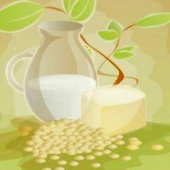Leite vegetal, uma alternativa saudável ao leite animal