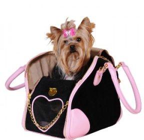 Acessórios Para Cachorro – Tudo Para Deixar O Seu Pet Na Moda